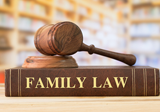 Click to get to TenShop product:Advanced Family Law for Senior Practitioners: Maximising Returns for your Clients - 5 program video webinar series